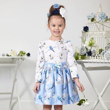 Picture of Ariana Dee Bluebird Blue Dress