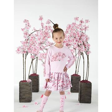 Picture of Ariana Dee Pink Fan Dress