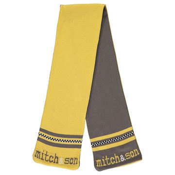 Picture of Mitch & Son Boys 'Declan' Grey/Yellow Reversible Scarf